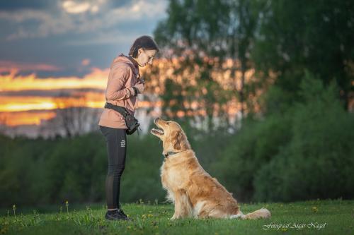 Koerte-pildistamine---Lemmikloomade-pildistamine---Fotograaf-Aigar-Nagel-2
