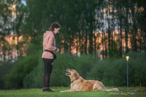 Koerte-pildistamine---Lemmikloomade-pildistamine---Fotograaf-Aigar-Nagel-6